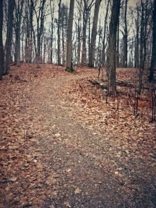 trail wrong way