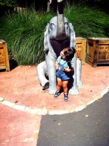 Hey Elephant... Now, don't eat me!
