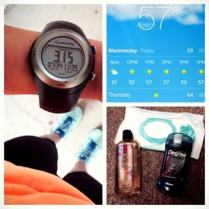 Lunch Run - Spring/Summer Necessities