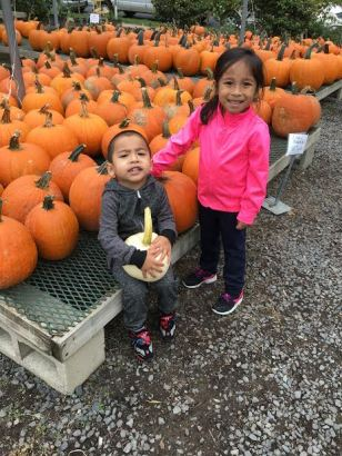 pumpkin-pick-day-2-pic