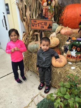 pumpkin-pick-day-2